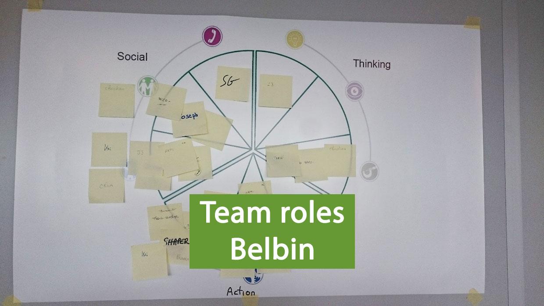 team-roles-Belbin
